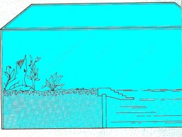Il terrario for Terrario per tartarughe acquatiche