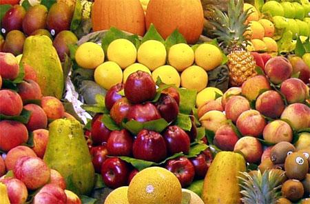 Piante e alberi da frutto - Alberi frutto giardino ...
