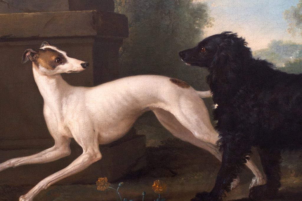 Greyhound nell'arte